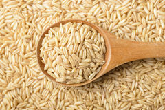 Oat. In the wooden spoon Royalty Free Stock Images
