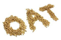 Oat Royalty Free Stock Images
