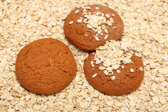 Oatcakes on rolled oats background Stock Photos