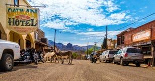 Oatman全景-历史的鬼城在亚利桑那,美国 在摩托车旅行期间被做的图片通过西部u 库存照片