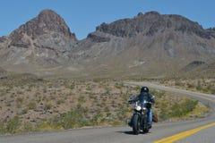 Oatman Arizona, USA, April 18, 2017: Cyklist som rider Route 66 Arkivbild