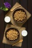 Oatmeal δημητριακά προγευμάτων με το γάλα Στοκ εικόνα με δικαίωμα ελεύθερης χρήσης