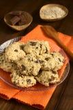 Oatmeal και σοκολάτας μπισκότα Στοκ Φωτογραφία