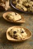 Oatmeal και σοκολάτας μπισκότα Στοκ Εικόνες