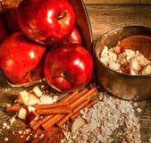 Oatmeal κανέλας της Apple Στοκ Φωτογραφία