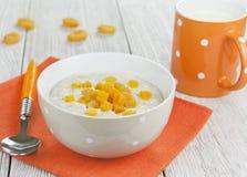 Oatmeal με τα ξηρά βερίκοκα Στοκ Εικόνες
