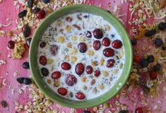 Oatmeal με τα φρέσκους μούρα, τους σπόρους και τα καρύδια στοκ φωτογραφία με δικαίωμα ελεύθερης χρήσης