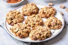 Oatmeal μπισκότα σταφίδων Στοκ φωτογραφίες με δικαίωμα ελεύθερης χρήσης