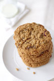 Oatmeal μπισκότα σταφίδων Στοκ εικόνα με δικαίωμα ελεύθερης χρήσης