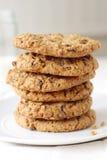 Oatmeal μπισκότα σταφίδων Στοκ Εικόνες