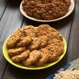Oatmeal μπισκότα της Apple Στοκ φωτογραφία με δικαίωμα ελεύθερης χρήσης