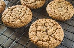 Oatmeal μπισκότα Στοκ Φωτογραφίες