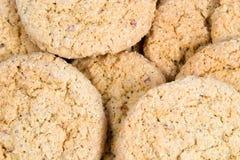 oatmeal μπισκότων Στοκ Εικόνα
