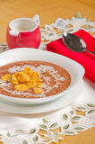 Oatmeal σοκολάτας με τα δημητριακά Στοκ εικόνες με δικαίωμα ελεύθερης χρήσης