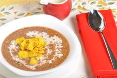 Oatmeal σοκολάτας με τα δημητριακά Στοκ Εικόνα
