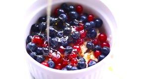 Oatmeal στο νερό με τα φρέσκα μούρα και το μέλι Γλουτένη - ελεύθερη και γάλα - ελεύθερα τρόφιμα απόθεμα βίντεο