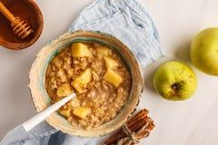 Oatmeal της Apple με την κανέλα και το μέλι Άσπρο υπόβαθρο, κορυφή vie στοκ φωτογραφία