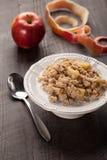 Oatmeal της Apple Στοκ εικόνα με δικαίωμα ελεύθερης χρήσης
