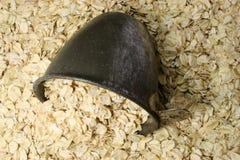 oatmeal чашки сухой стоковая фотография rf