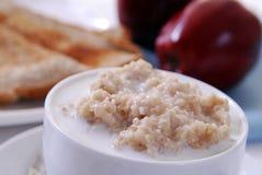 oatmeal шара стоковое изображение