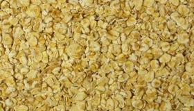 oatmeal Arkivfoton