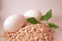 oatmeal photographie stock libre de droits