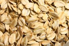oatmeal стоковые изображения