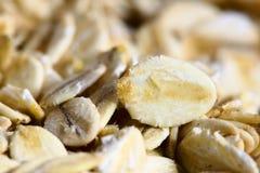 oatmeal стоковые изображения rf