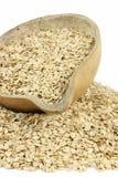 oatmeal стоковая фотография
