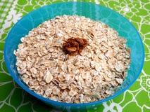 oatmeal Royaltyfria Bilder