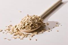 oatmeal стоковое фото