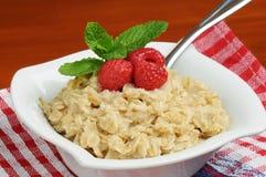 oatmeal Στοκ Φωτογραφίες