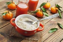 oatmeal Arkivbilder