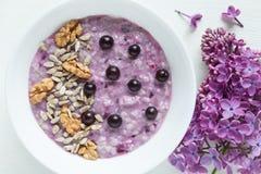 Υγιές χορτοφάγο γεύμα διατροφής Καθαρό oatmeal κατανάλωσης Στοκ Φωτογραφία