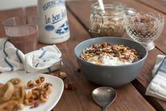 oatmeal Royaltyfri Foto