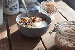 oatmeal Royaltyfria Foton