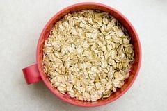 Oatmeal Imagem de Stock Royalty Free