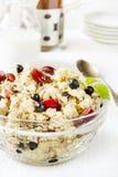 oatmeal Immagine Stock