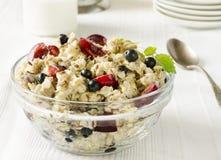 oatmeal Fotografie Stock