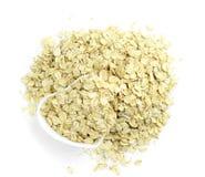 oatmeal Royaltyfri Fotografi