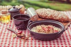 oatmeal photos stock