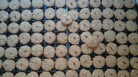 Oatmeal Almond cookies from top view  Stock Images
