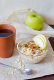 Oatmeal with apple Royalty Free Stock Photo