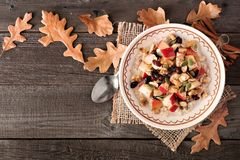 Oatmeal with apples and cranberries, top view with fall leaves. Autumn oatmeal with apples, cranberries, seed and nuts, top view on wood with fall leaves Royalty Free Stock Photos