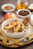 Oatmeal with apples, raisins, cinnamon and ingredients, vertical Stock Images