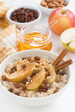 Oatmeal with apples, raisins, cinnamon and ingredients on white Royalty Free Stock Photo