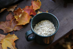 Oatmeal and Autumn Camping Royalty Free Stock Image