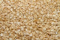 Oatmeal background Stock Image