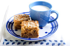 Oatmeal bars with raisin and nuts Royalty Free Stock Photo
