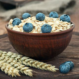 Oatmeal with blueberry Stock Photography